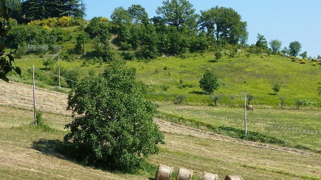 Affaccio su prati e terreni coltivati