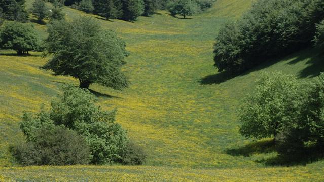 Passeggiate al monte Subasio - Assisi